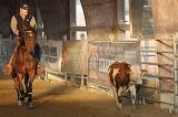 Cowhorse2.jpg